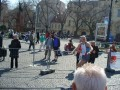 ČSOB City Marathon 2008 - 12